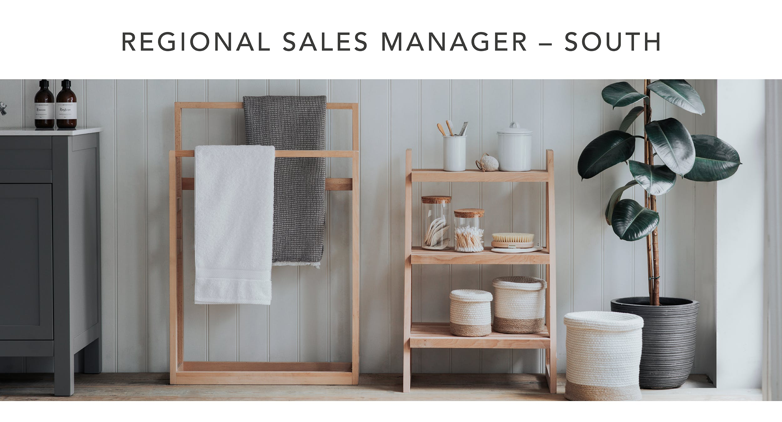 Regional Sales Manager - South