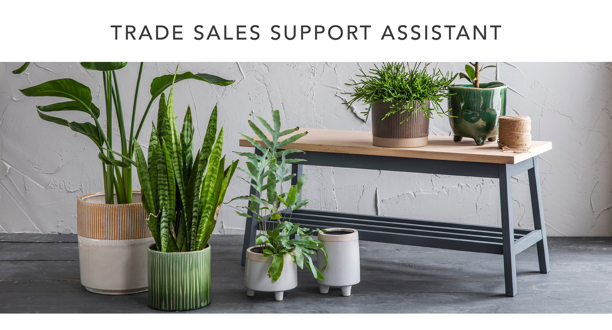 Trade Sales Support Assistant
