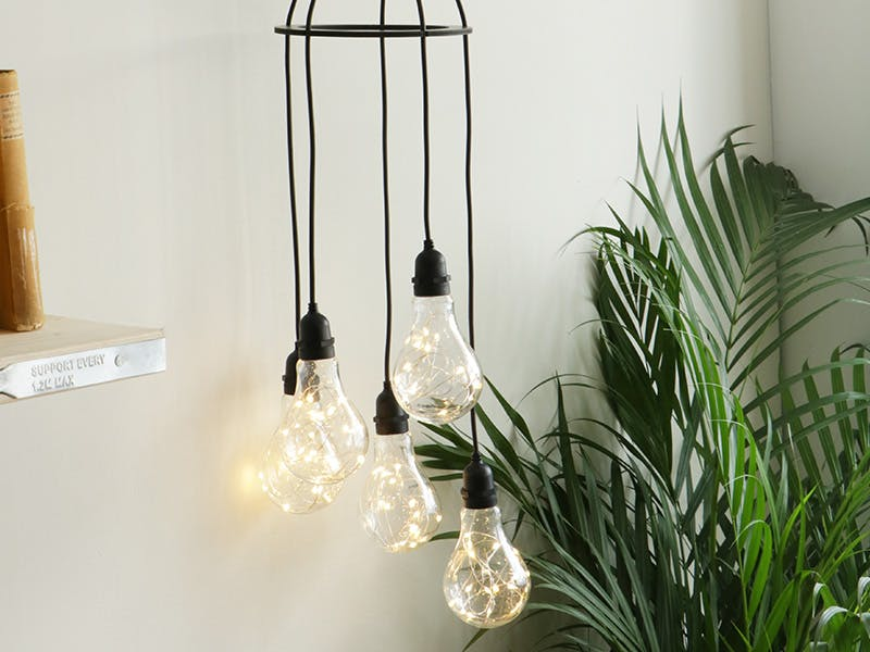 Festoon Cluster Lights hanging next to shelf by a plant