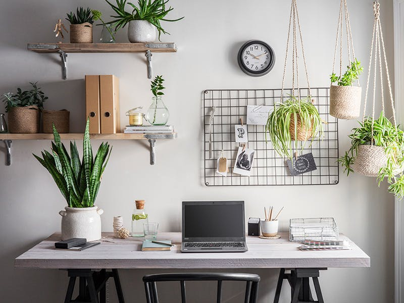 Home Office space with desk, memo board and shelves filled with plant pots, files and candles