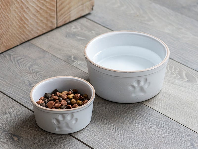 Large and small white stoneware  pet bowl