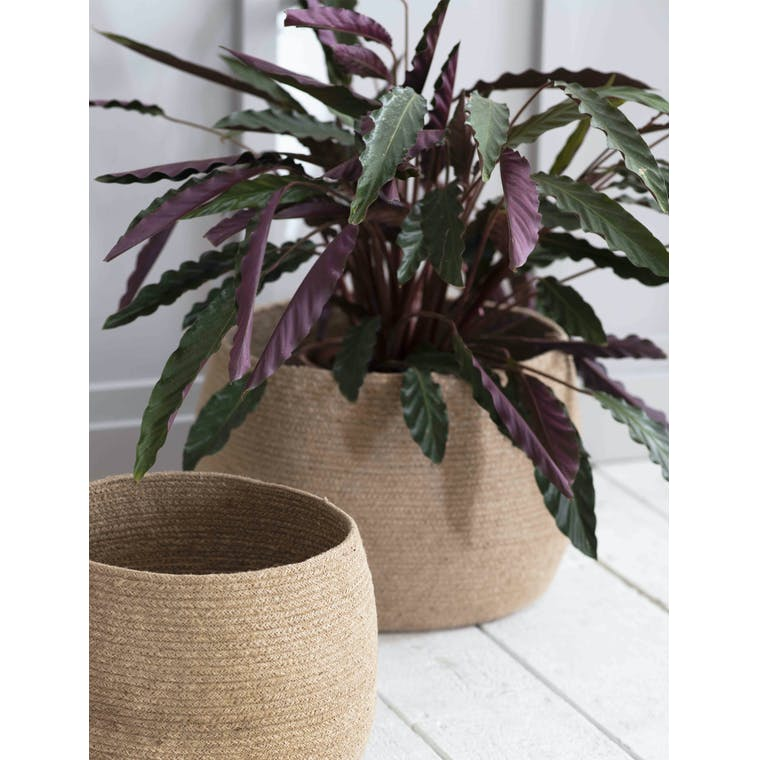 Garden Trading Set of 2 Rounded Baskets