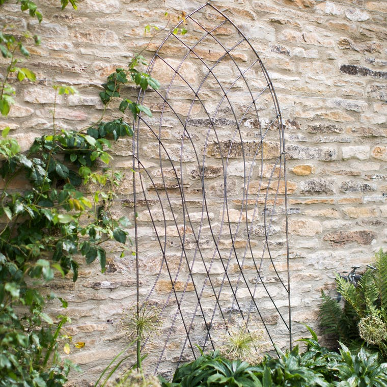 Raw Metal Arch Barrington Trellis  | Garden Trading