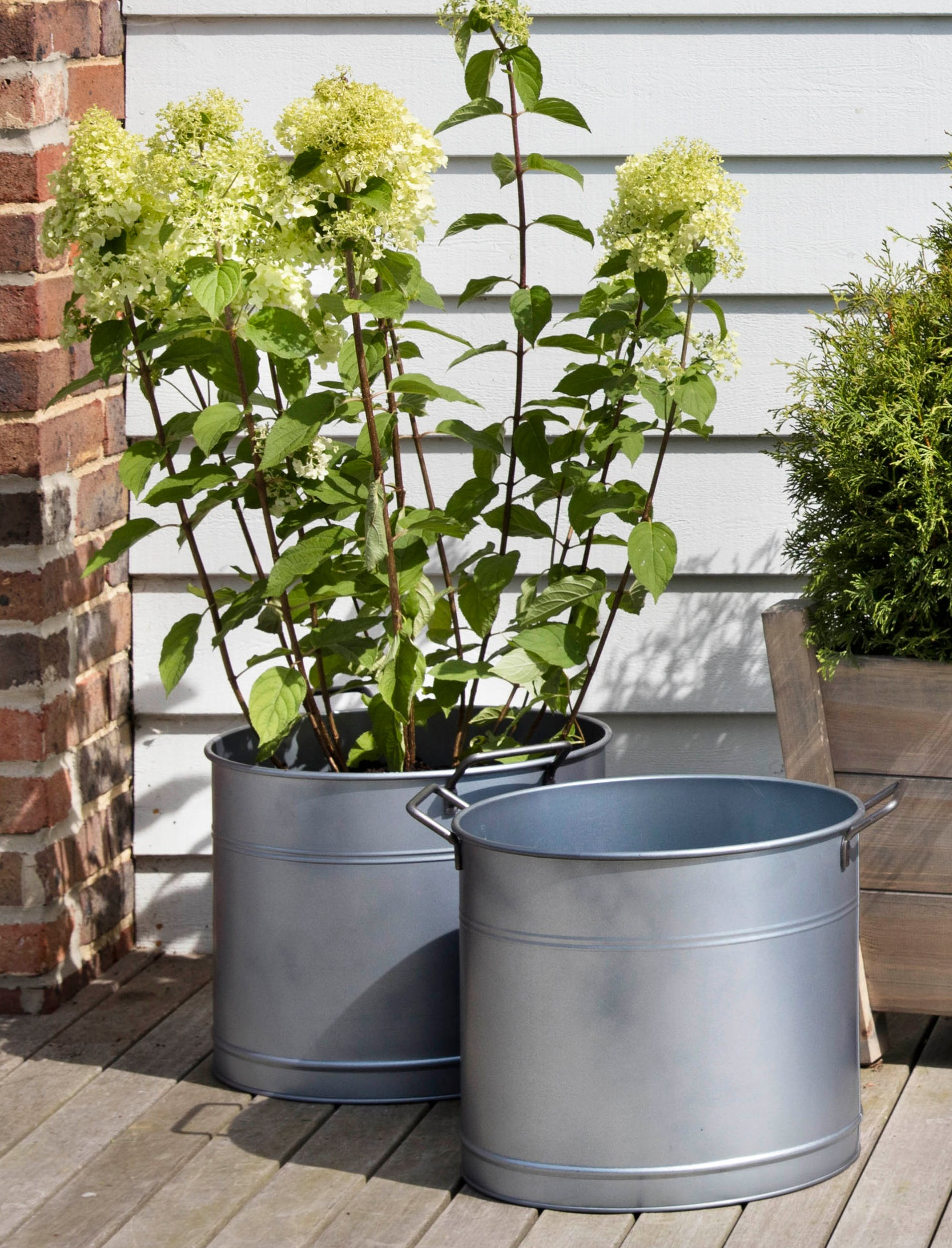 Galvanised Set of 2 Buckets | Garden Trading
