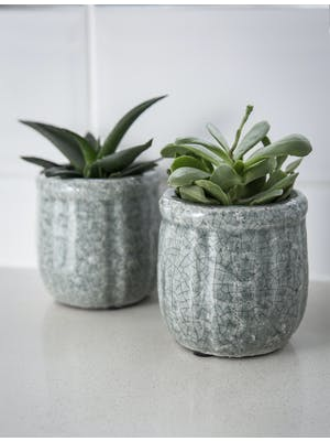 Pair of Minori Pots