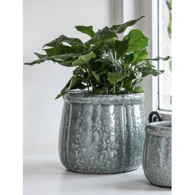 Ceramic Crackle Glaze Pot in Small or Large | Garden Trading