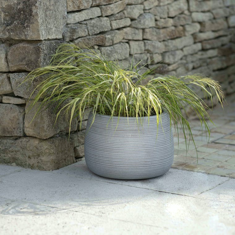 Fibre Clay Coates Planter in Small, Medium, Large or Set of 3 | Garden Trading