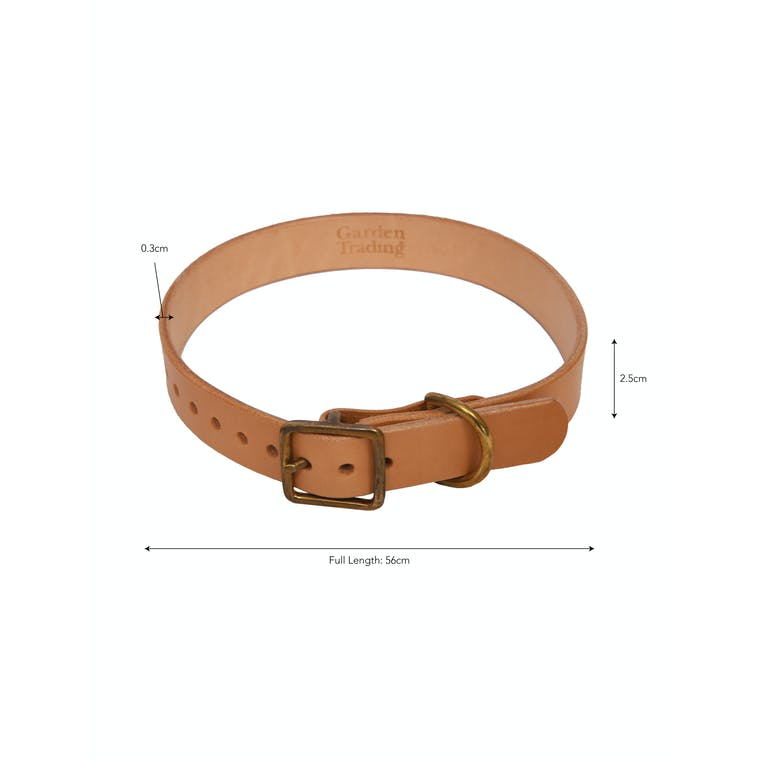 Leather Leafield Dog Collar in Small, Medium or Large| Garden Trading