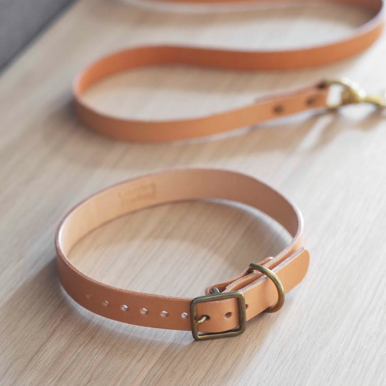 Leather Leafield Dog Collar in Small, Medium or Large