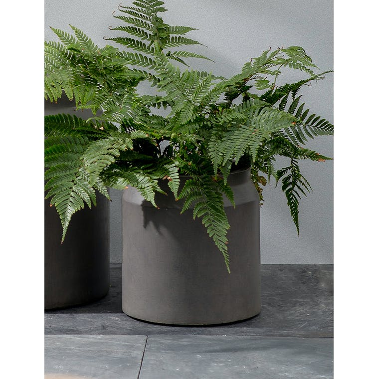 Draycott Planter, Small in Pebble by Garden Trading