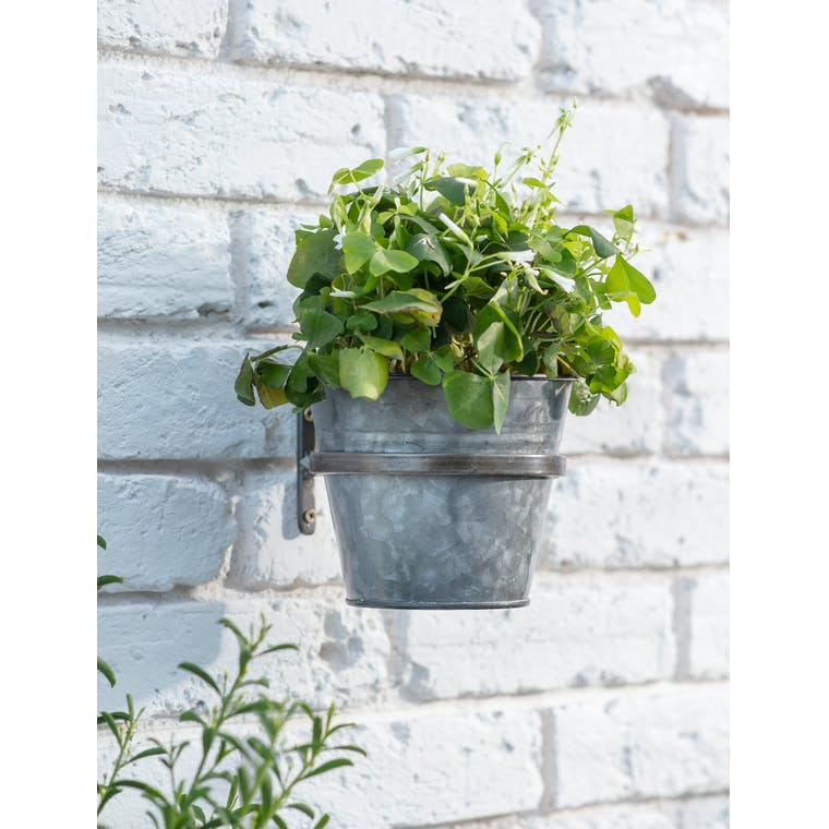 Single Winson Wall Pot and Holder in Black by Garden Trading