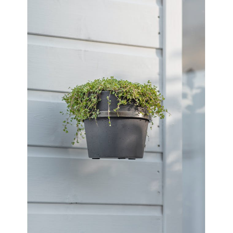 Single Stratton Wall Pot and Holder in Carbon by Garden Trading