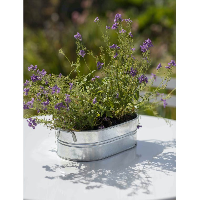 Galvanised Farmington Trough in Small or Large | Garden Trading