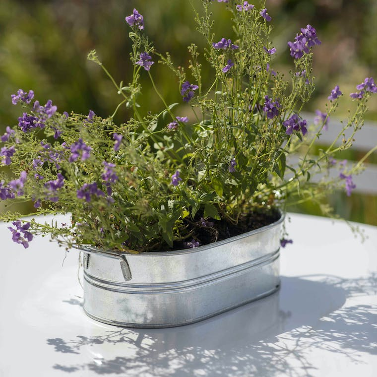 Galvanised Farmington Trough in Small or Large   Garden Trading