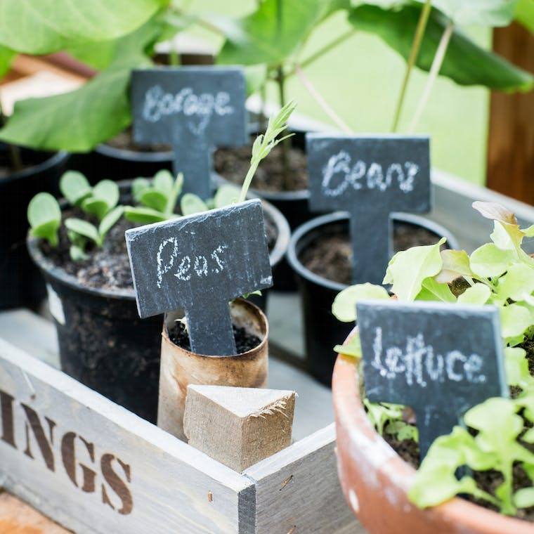 Slate Set of 6 Greenhouse Tags with White  | Garden Trading