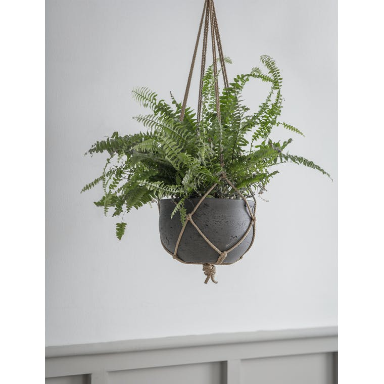 Concrete Stratton Hanging Pot in Cream or Black | Garden Trading