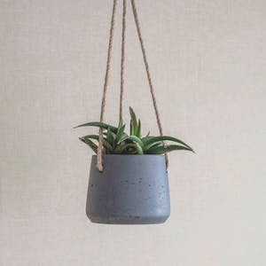 Stratton Hanging Pot, Small