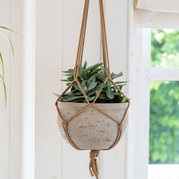 Cement Stratton Hanging Plant Pot | Garden Trading