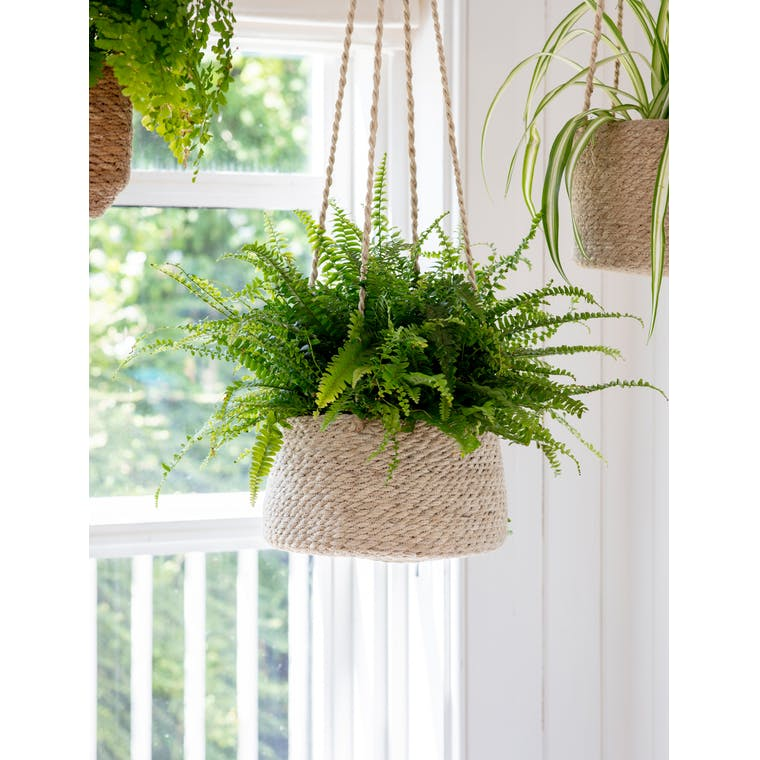 Garden Trading Tapered Jute Hanging Plant Pot