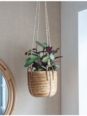 Mayfield Hanging Plant Pot