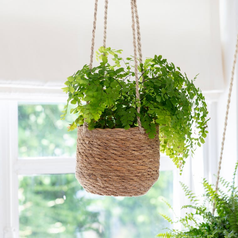 Jute Tapered Hanging Indoor Plant Pot | Garden Trading