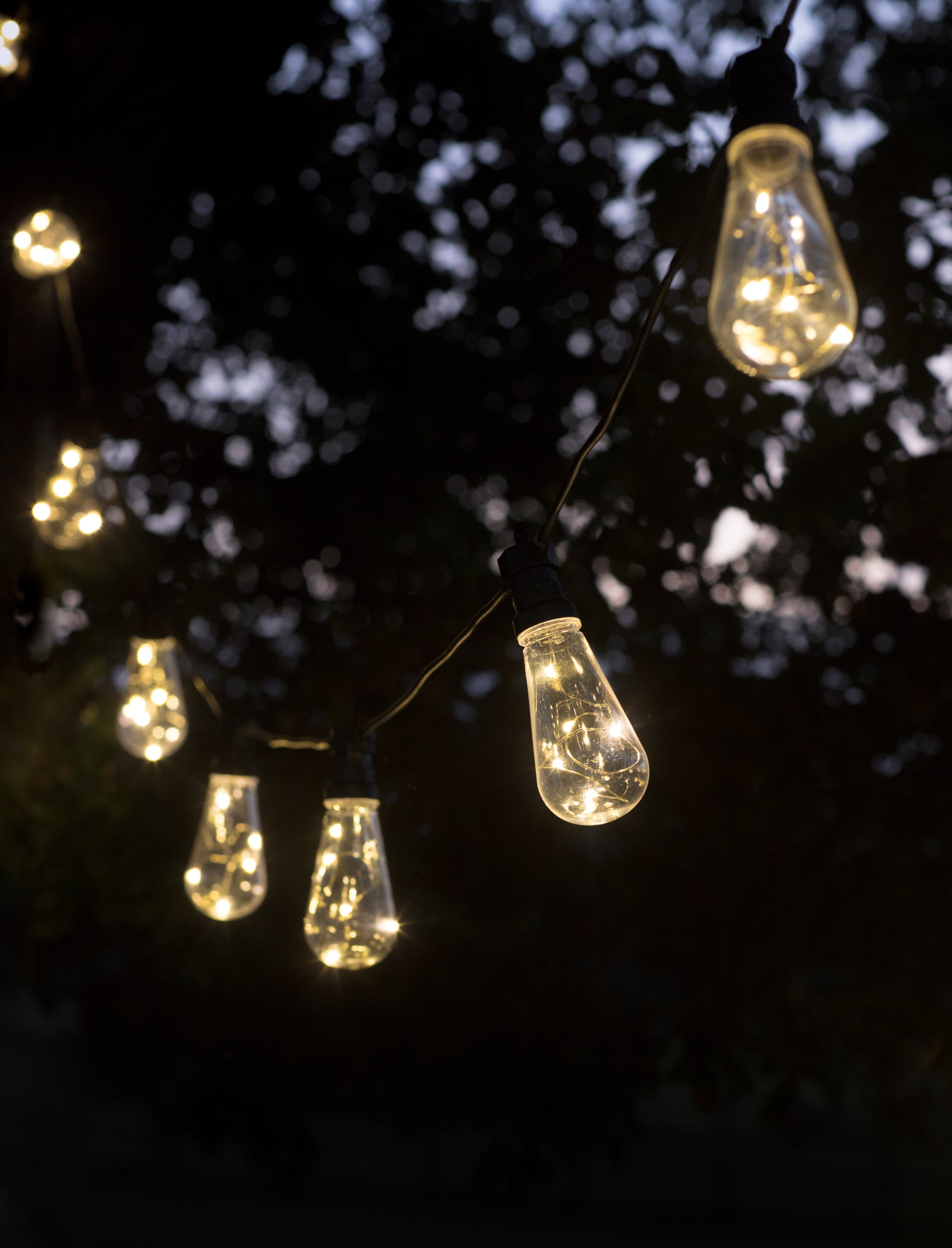 Squirrel Festoon Lights in 10 or 20 Bulbs | Garden Trading