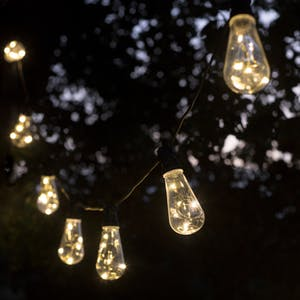Festoon Lights, Squirrel