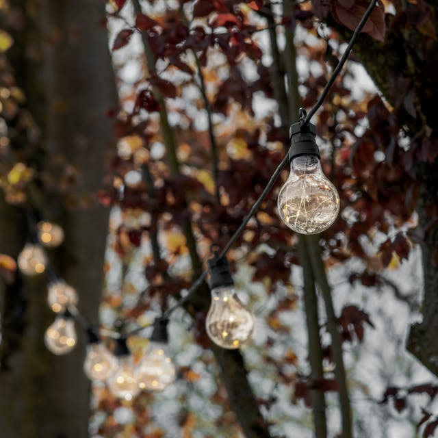 Festoon Classic Extendable Lights