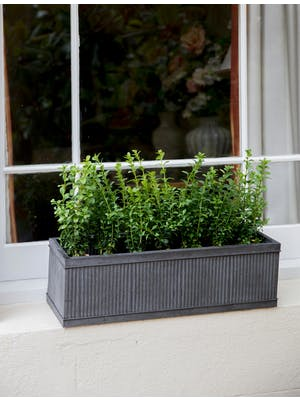 Vence Window Box