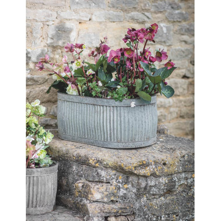 Oval Vence Trough, Large by Garden Trading