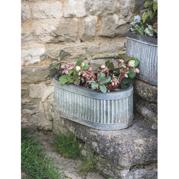 Oval Vence Trough, Small by Garden Trading