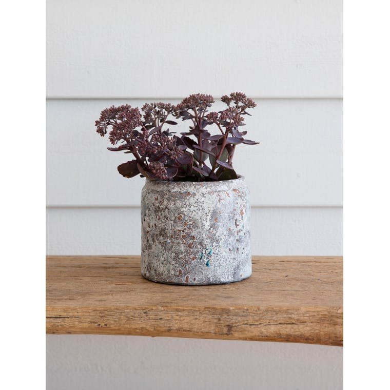 Ceramic Withington Plant Pot in Small or Large | Garden Trading