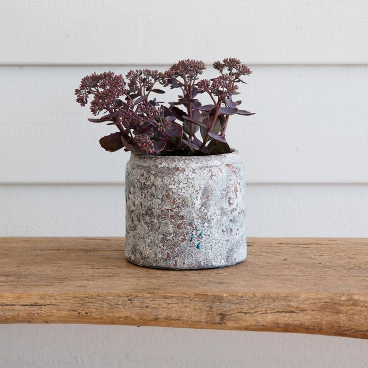 Ceramic Withington Pot in Extra Small, Small or Large | Garden Trading
