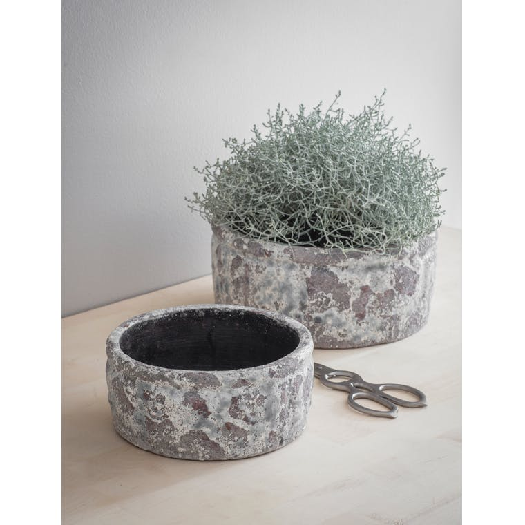 Ceramic Withington Flower Bowl in Small or Large | Garden Trading