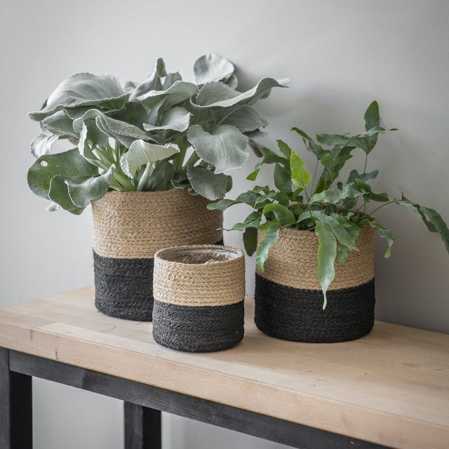 Set of 3 Striped Pots