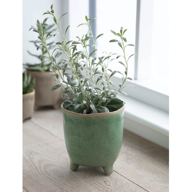 Garden Trading Positano Pot, Large in Foliage Green - Ceramic