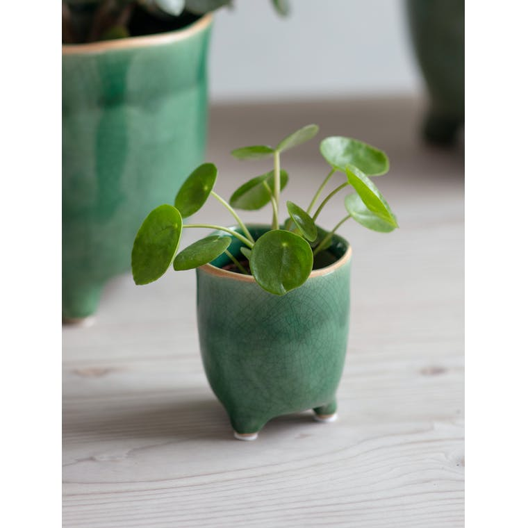 Forest Green Positano Pot, Small by Garden Trading