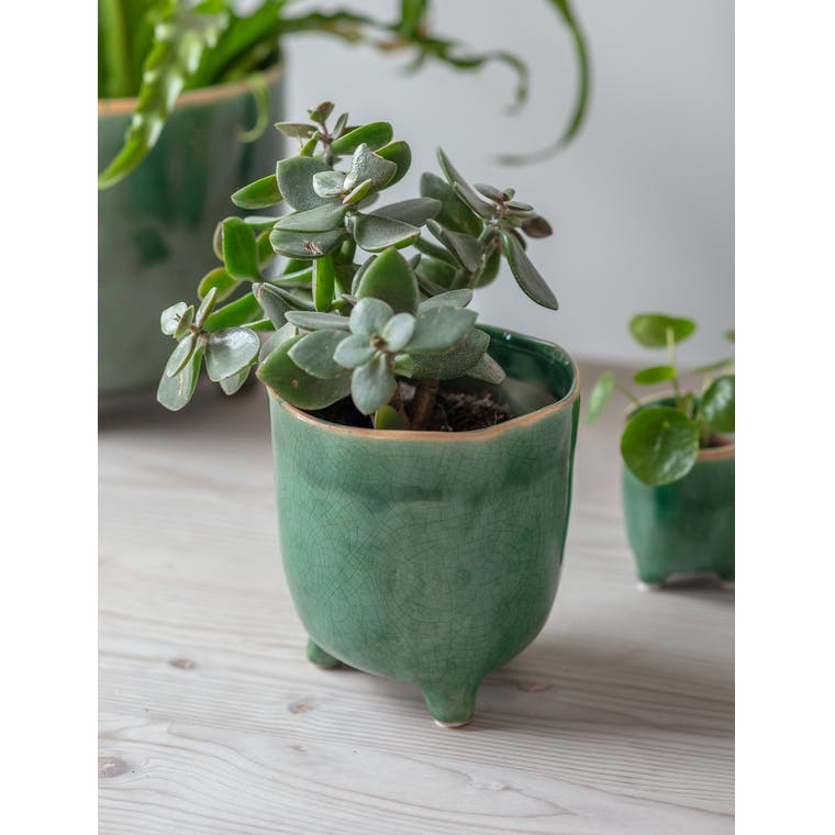 Forest Green Positano Pot, Large by Garden Trading