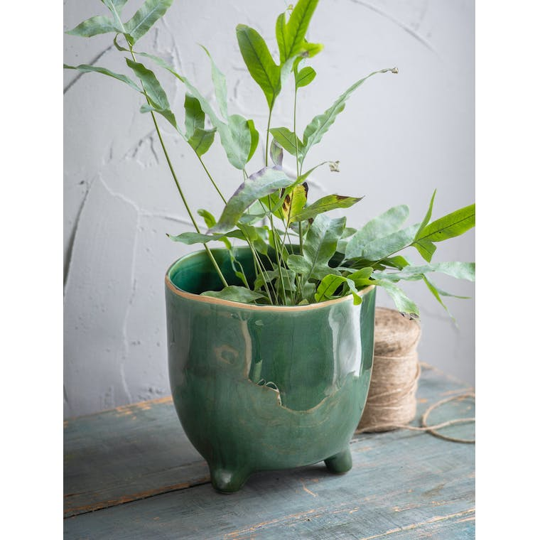 Forest Green Positano Pot, Extra Large by Garden Trading