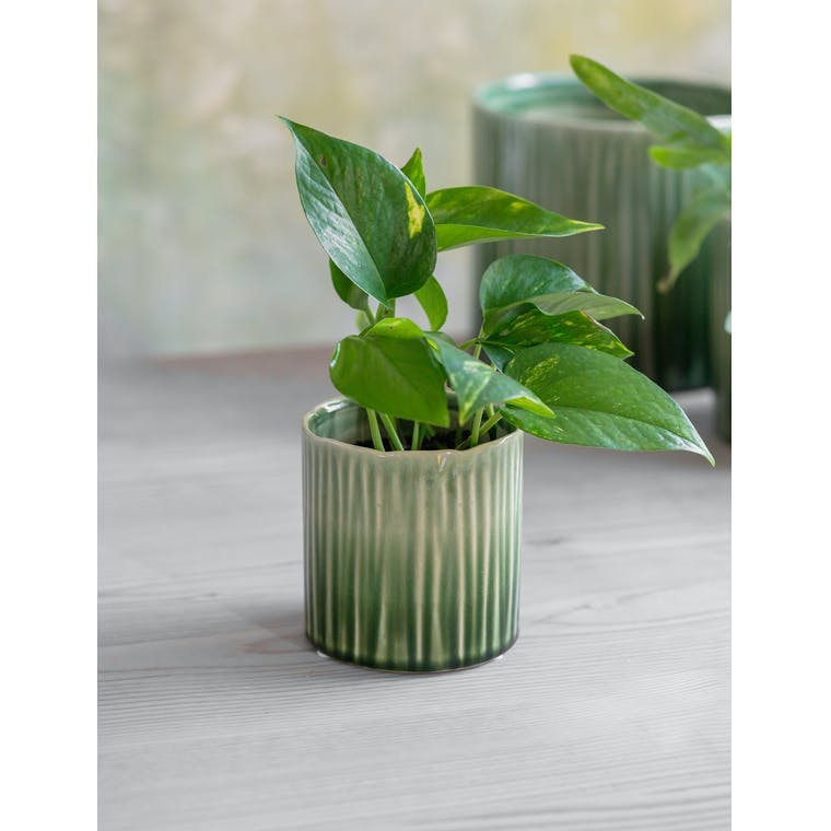 Nettleton Pot, Small by Garden Trading
