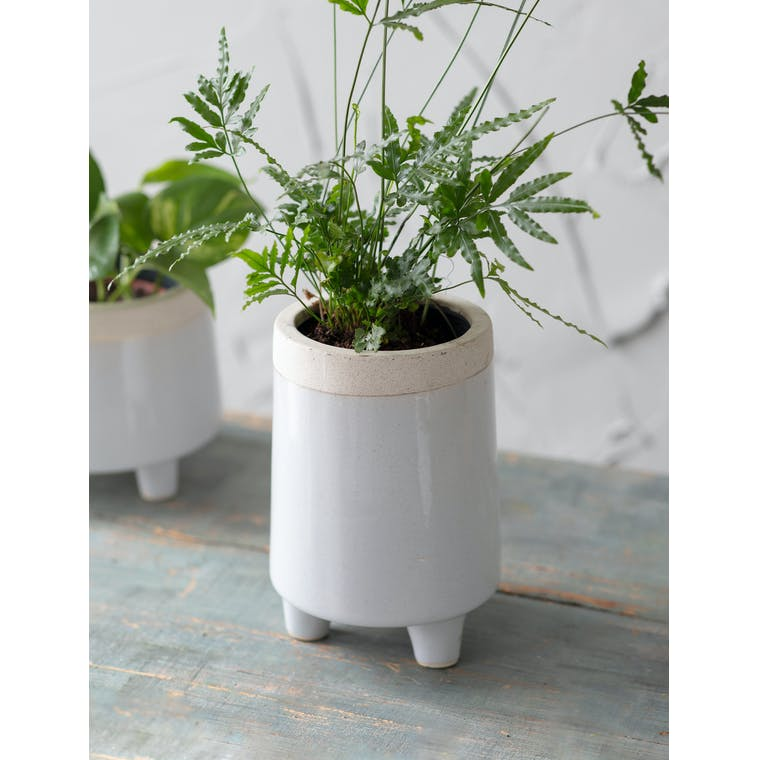 Sherston Pot, Tall, Small by Garden Trading