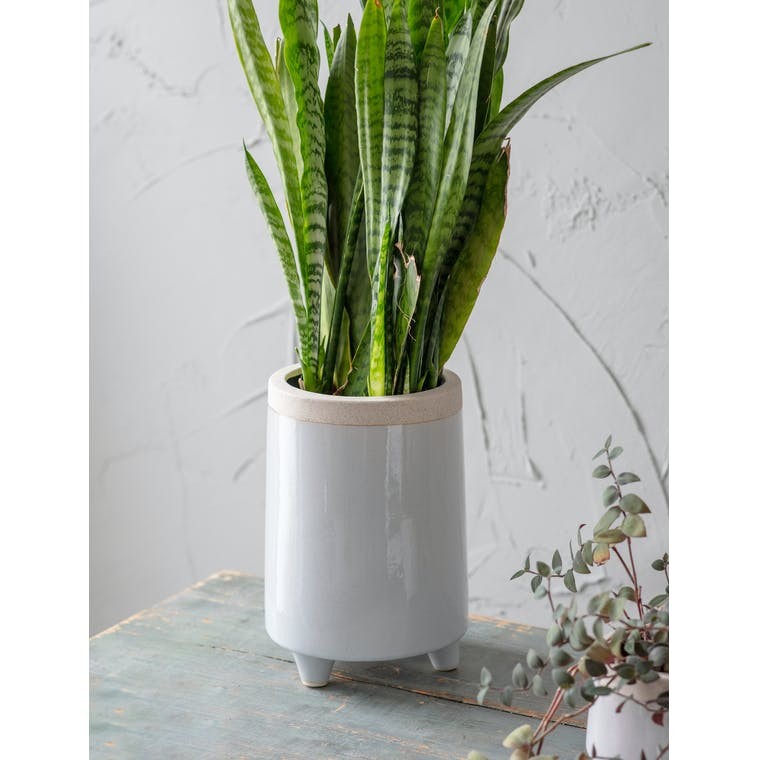 Sherston Pot, Tall, Large by Garden Trading