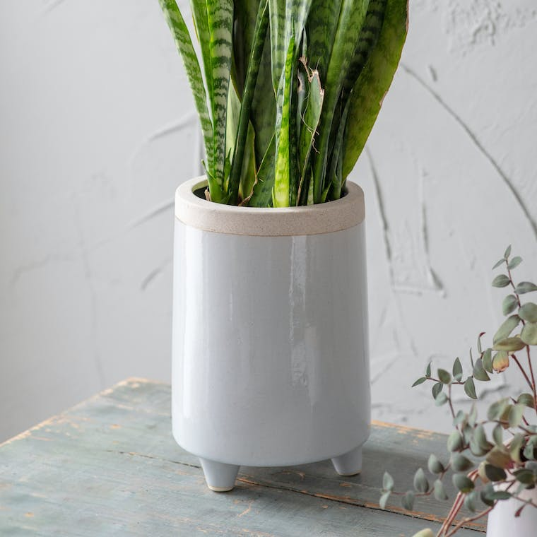 Ceramic Tall Sherston Pot in Small or Large | Garden Trading
