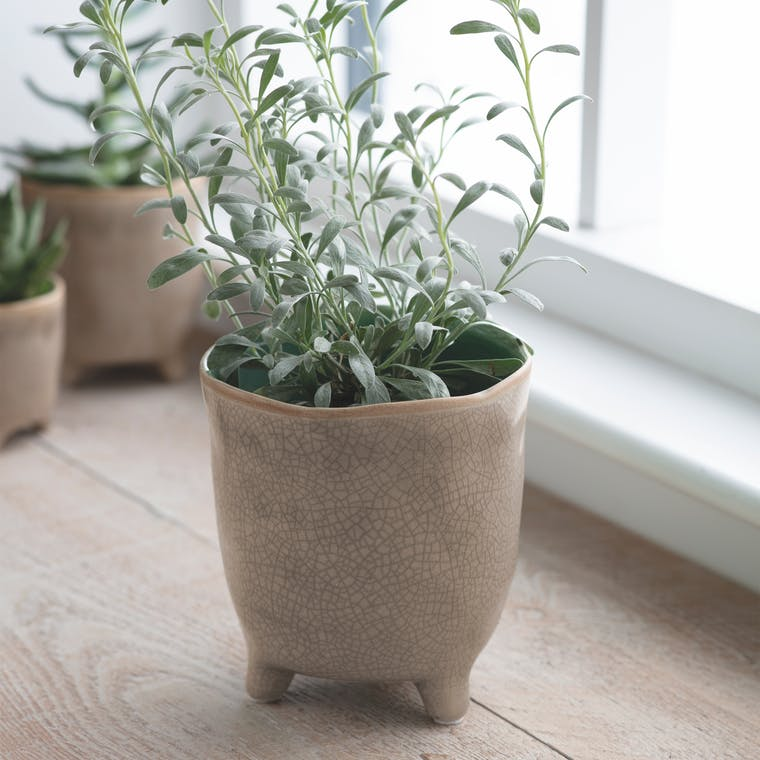 Ceramic Positano Pot Natural in Small, Medium or Large | Garden Trading