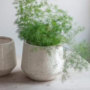 Ravello Ridged Pot