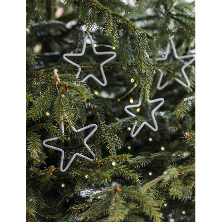 Garden Trading Set of 4 Selwood Stars