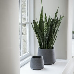 Set of 2 Stratton Tapered Pots