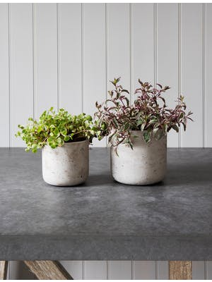 Set of 2 Stratton Straight Plant Pots