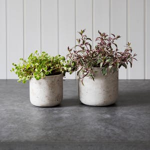 Set of 2 Stratton Plant Pots