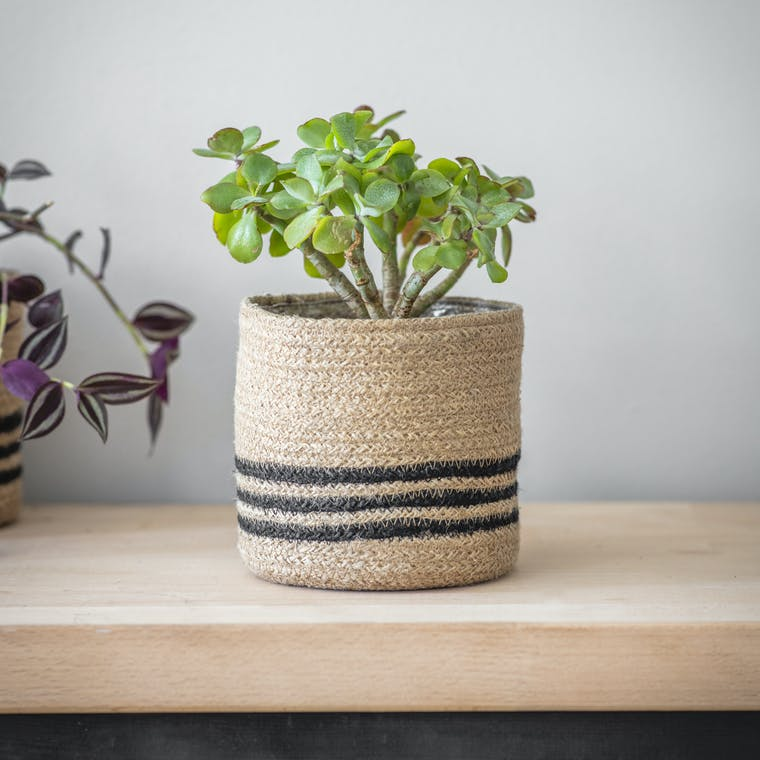 Jute Striped Pot | Garden Trading